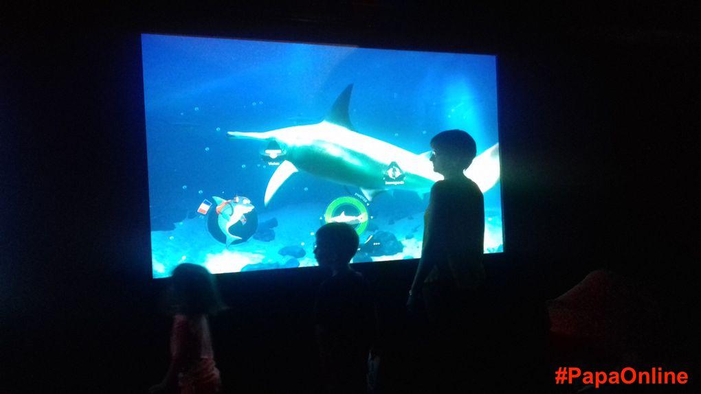 Pédagogie, explications,dessin, interactivité... Les enfants ont fait le plein d'activités à Sea Life !