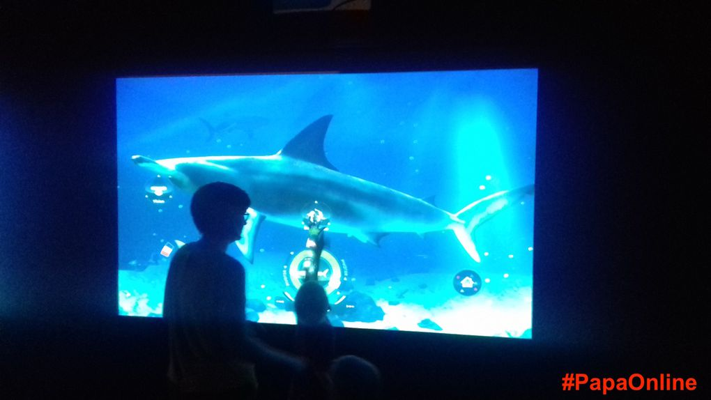 Au milieu des poissons, des moments uniques à savourer pleinement (9 photos, n'hésitez pas à laisser défiler pour les regarder toutes !)