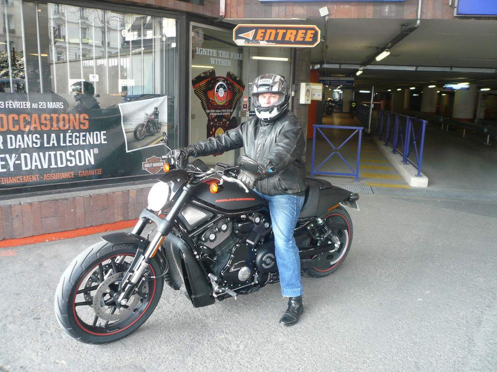 Quelques Harley-Davidson (883, Fat Bob, Night Rod)
