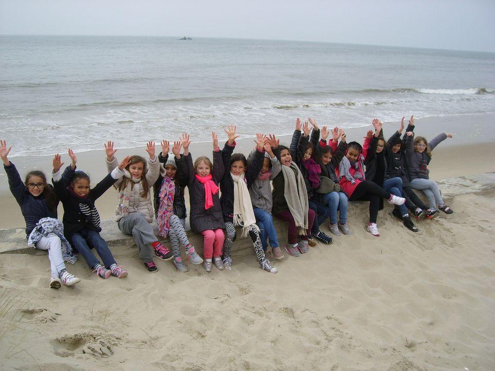 Excursion dans les dunes (CE2)