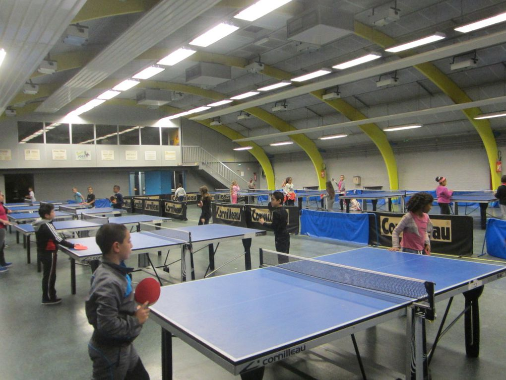 Le tennis de table (CM1)