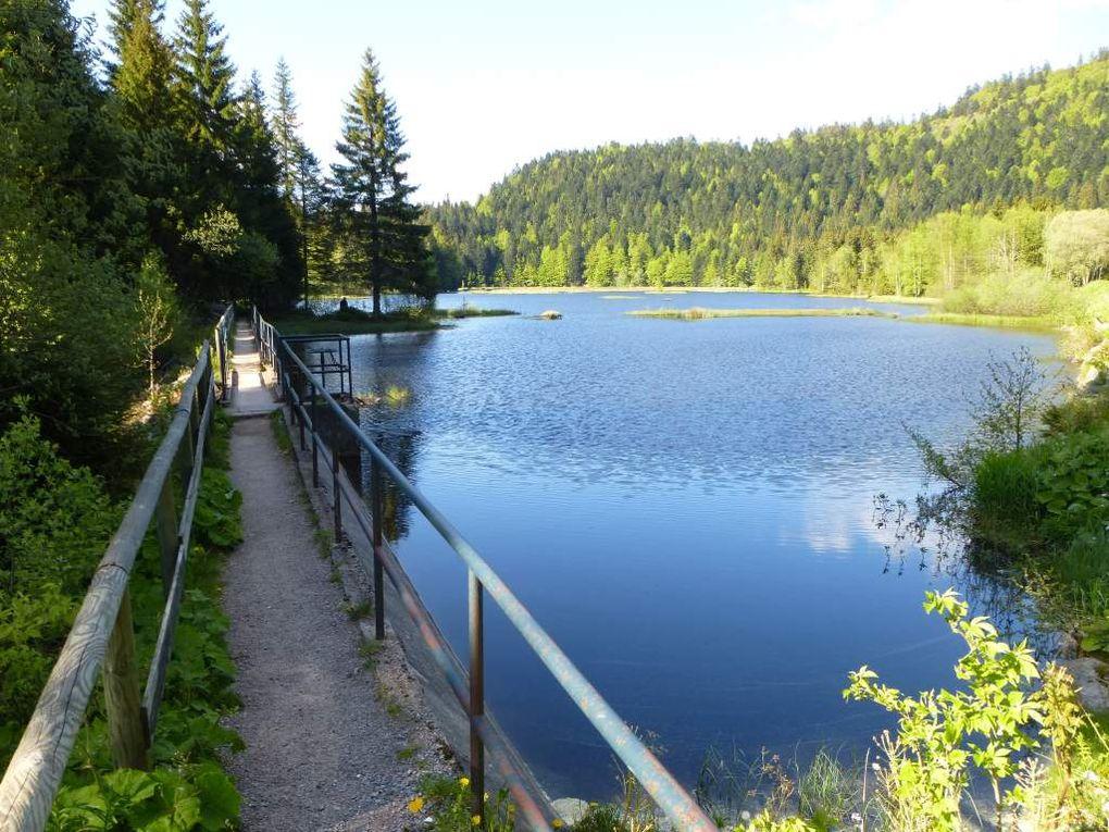 Perspectives idylliques, sur les eaux bleu acier du lac de Lispach ...