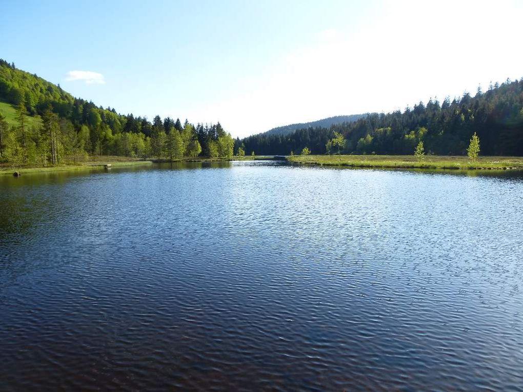 Fin de la balade circulaire, autour du lac-tourbière de Lispach ...