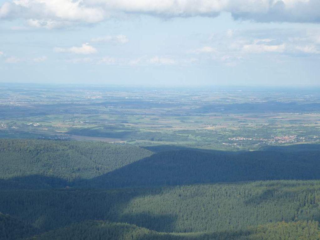 Baerenberg / Schneeberg (Wangenbourg-Engenthal) : le plateau tourbeux ...