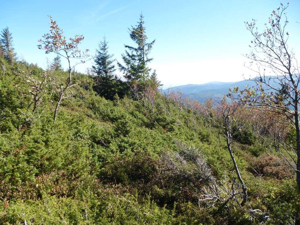 Diaporama 1 : le site du pierrier granitique du Steinmauer, face au Hilsenfirst.