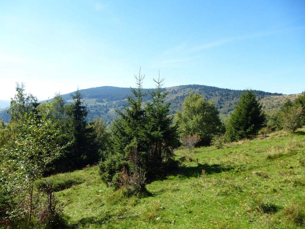 Diaporama : une ascension sauvage, entre le Hilsen et le Steinmauer.