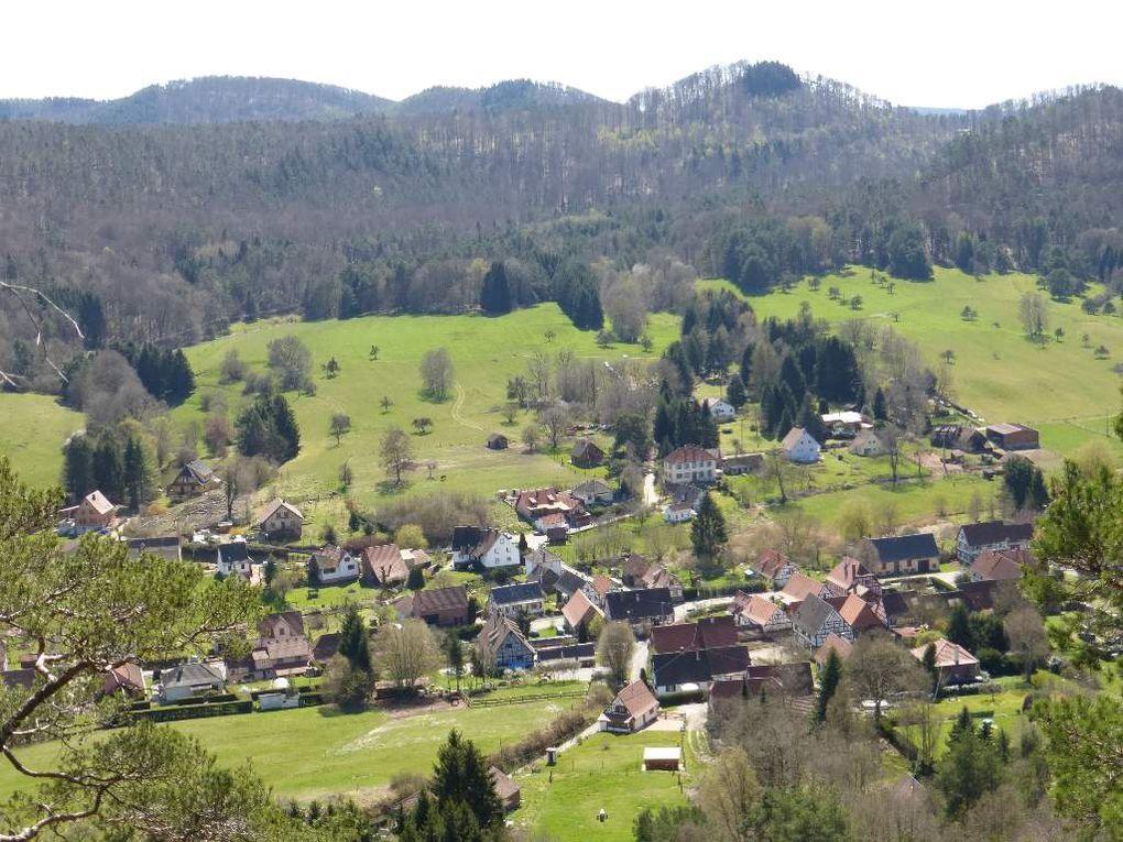 Vosges du Nord : ARNSBERGFELS (alt. 350 m) - 04 - .