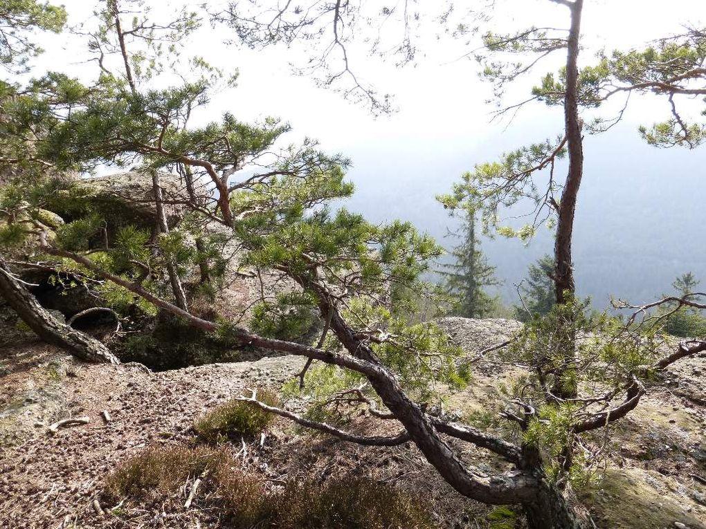 Le chaos rocheux sommital du Brotschberg, au tout début du printemps (mars 2015) ...