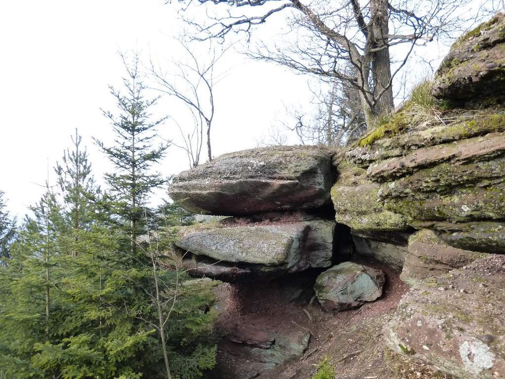 Au sommet du Schlossberg, entre l'Ochsenstein et le Wuestenberg ...