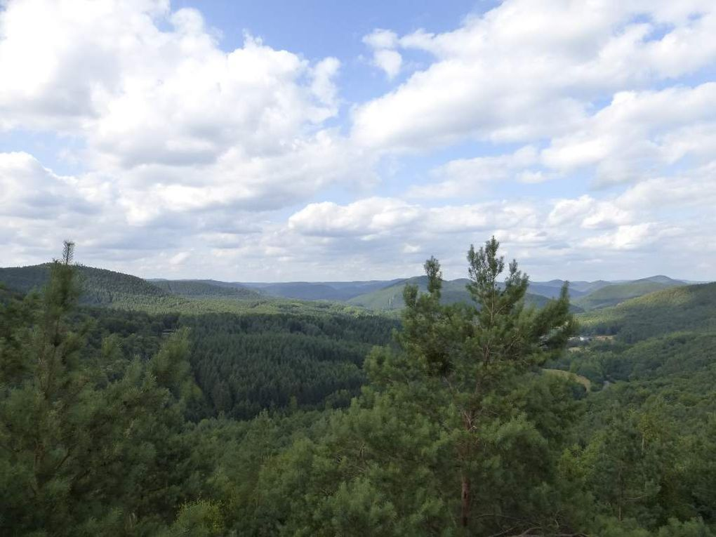 Palatinat : HASELSTEIN (alt. 388 m) - 06 - .
