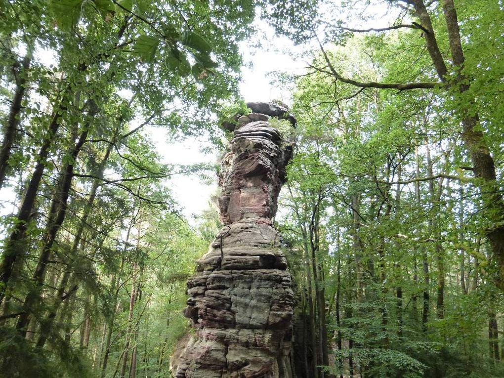 Le site du Schafsfels, situé sur le ban communal d'Erfweiler.