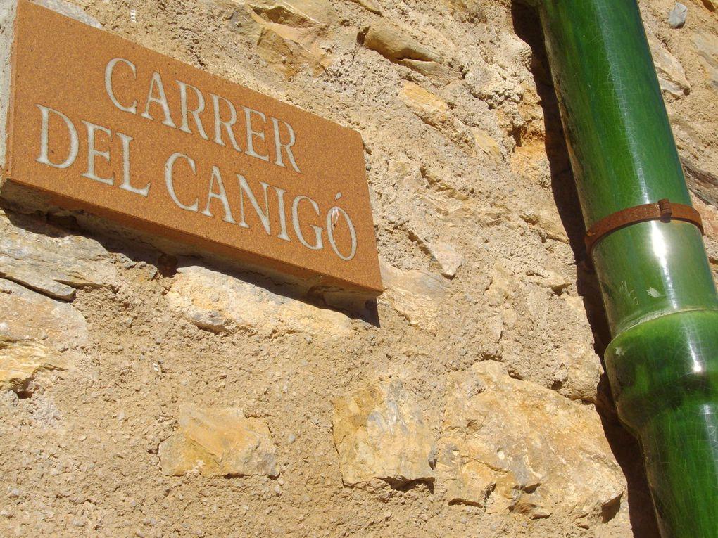 En route pour le Canigou. Les candidats de droite (Jean Castex, Bruno Delmas) ont pris le Canigou comme décor de leurs affiches.