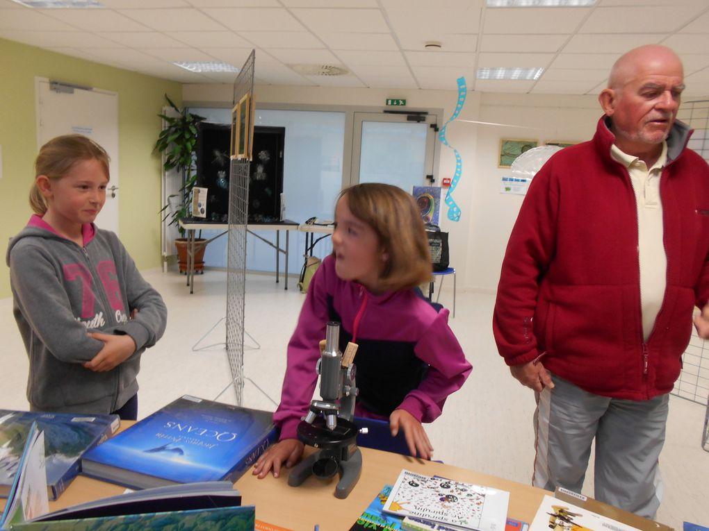 Les CE a l'exposition sur le plancton
