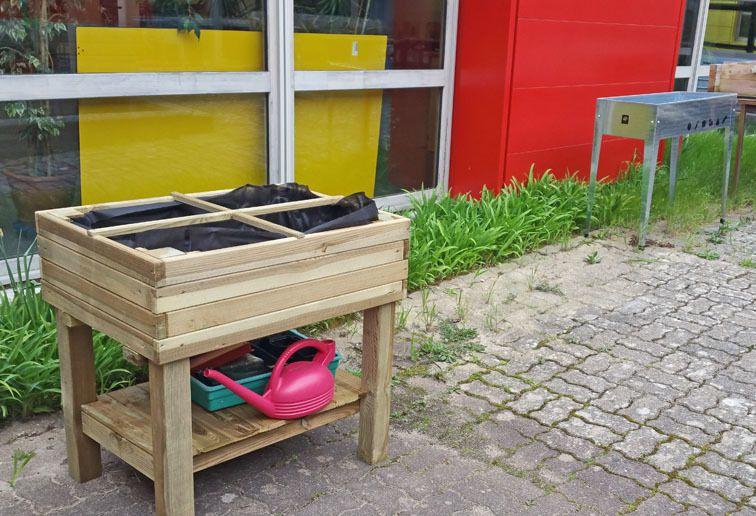 Le jardin-potager bio de l'école primaire
