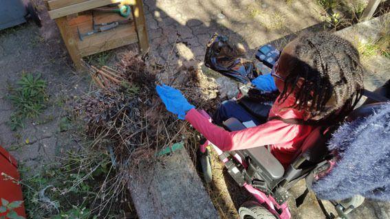 Nettoyage d'automne dans notre &quot&#x3B;biopark&quot&#x3B;