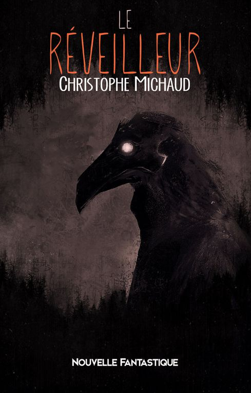 CHRISTOPHE MICHAUD : UN AUTEUR DE DARK FANTASY