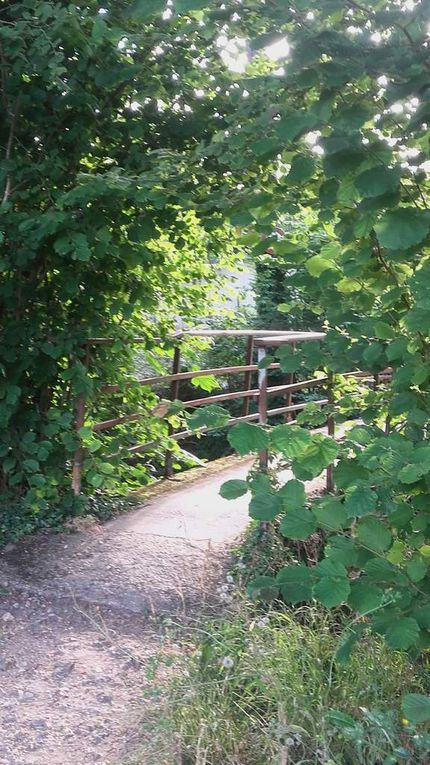 Trail en Eure-et-Loir - En petites foulées des Trois Ponts à Morancez