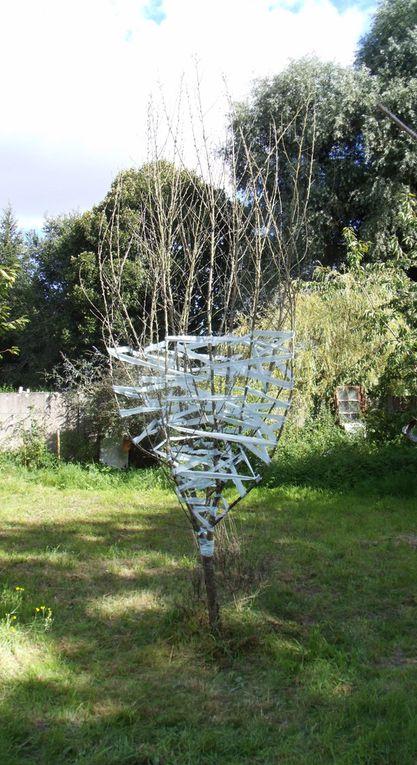 Toile d'arbre 1.