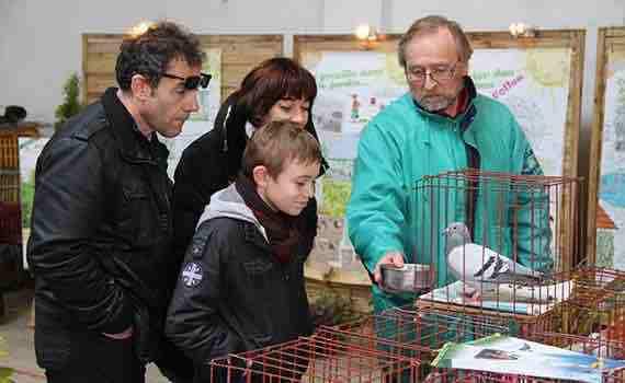 Les élèves du collège Boris Vian sont allés à la rencontre du monde agricole en se rendant à la foire agricole de la Passion qui se déroule à Audruicq chaque année au mois de Mars. L'occasion pour eux de voir un gymkhana de tracteurs (Concours de conduite fine de tracteurs) et de nombreux animaux de la ferme.
