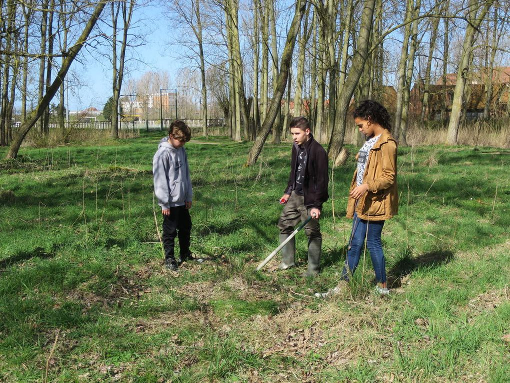 O3 A8 Planter des arbres pour fêter l'Europe