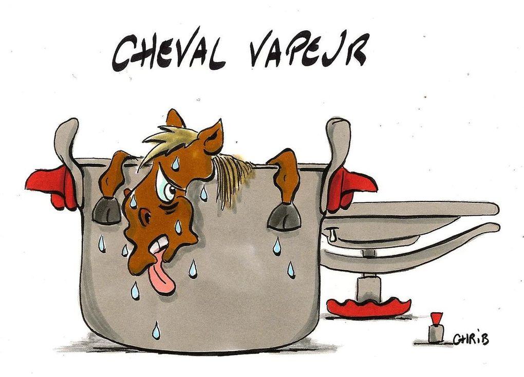 Chrib