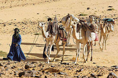 L'homme bleu du désert