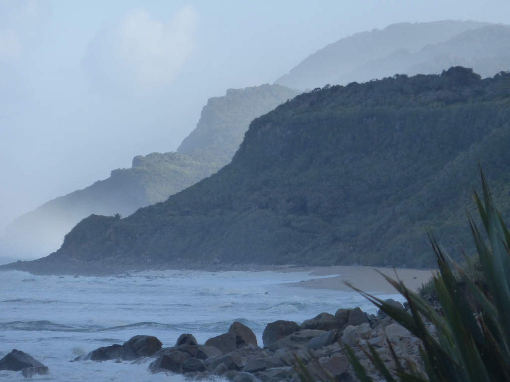 Heaphy Track - Great Walk #4