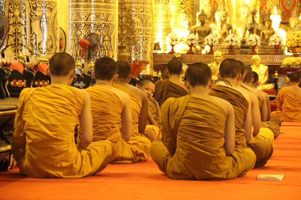 Chiang Mai : temples et parc national