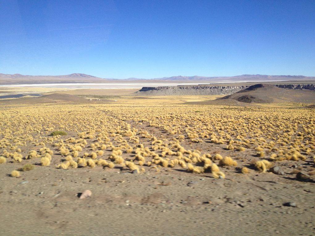 Bilan de 4 semaines au Chili