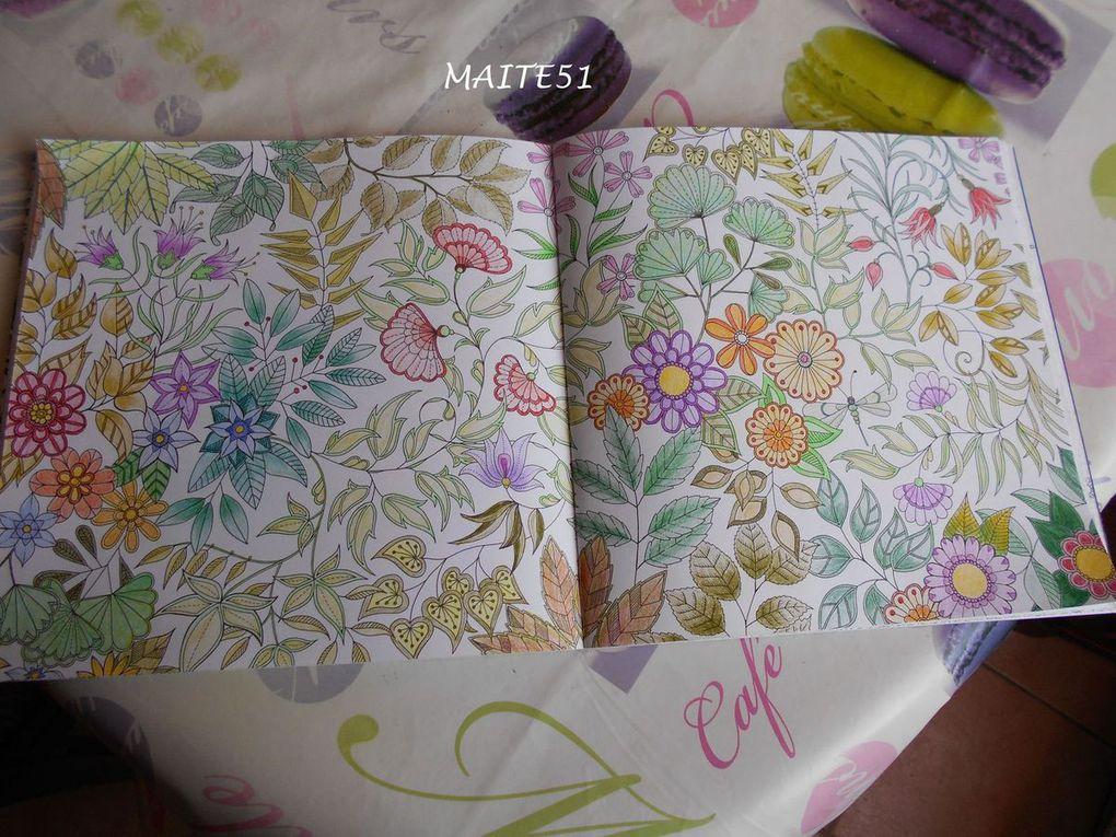 Double page dans &quot&#x3B;Jardin Secret&quot&#x3B; !