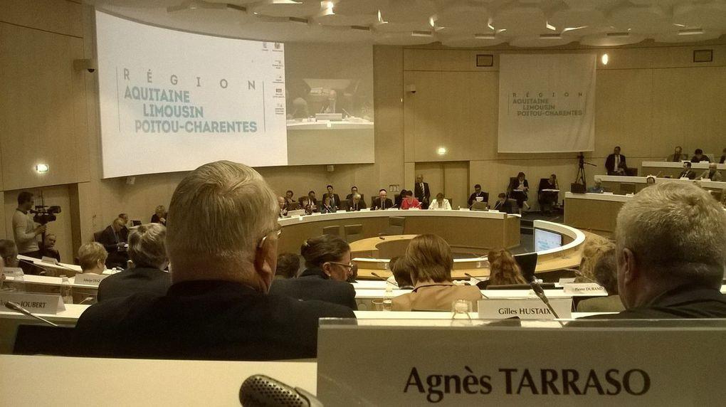 Assemblée Plénière Région Aquitaine-Limousin-Poitou-Charentes