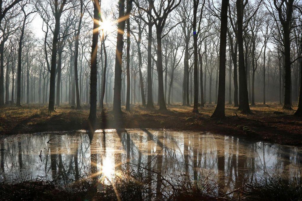 Photos hivernales de Christian D.
