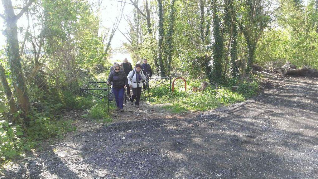 2016-05 Belloy-en-France et Forêt de Carnelle