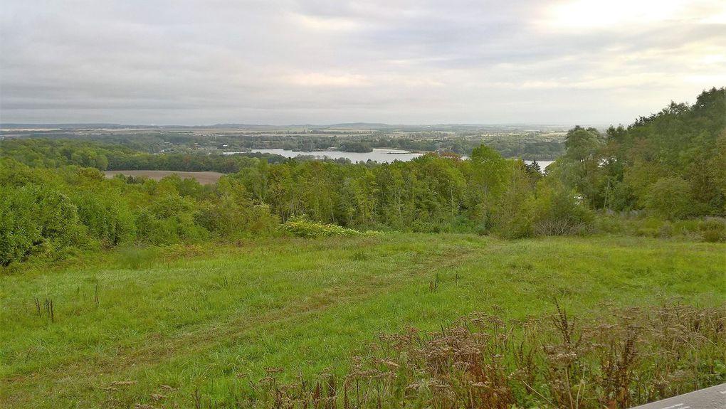 Forêt des Vallières Carnetin