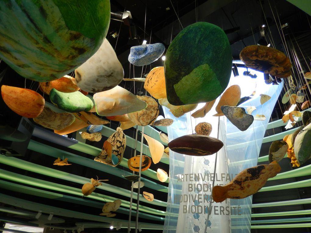 I campi di idee della Germania a Expo 2015
