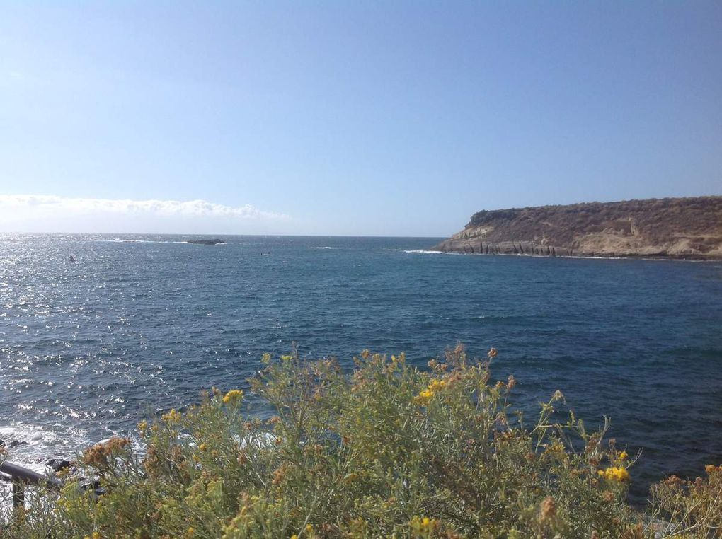 Isole Canarie - Tenerife