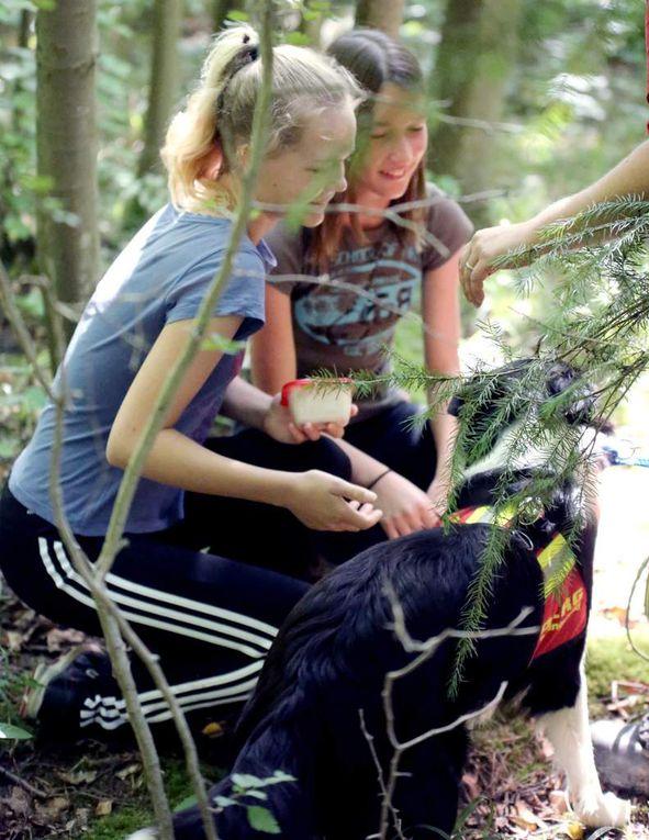 Es war schon erstaunlich, wie schnell der erst einjährige Sammy selbst im Wald versteckte Kinder aufspürte.