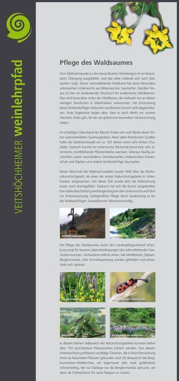 Ein von Hubert Marquart vom Landschaftspflegeverband Würzburg erstelltes Kapitel ist der oberhalb des oberen Talbergweges durchgeführten Waldsaumpflege (Tafel 7) gewidmet. Die durchgeführten Maßnahmen bewirken die Regeneration und Sicherung der hohen Biodiversität mit einem besonders hohen Anteil an seltenen und gefährdeten, bayernweit bedeutsamer Saumarten.