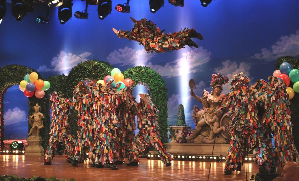Seit vielen Jahren sind sie traditioneller Bestandteil von Fastnacht in Franken: Die Allersberger Flecklashexen! 2017 präsentieren sie erstmals einen eigenen Tanz mit vielen akrobatischen Elementen.
