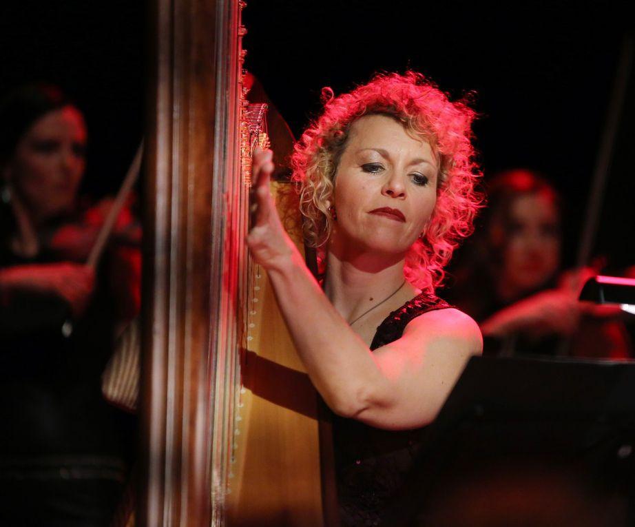 In zauberhafte Stimmung versetzten Harfenistin Anne Kox-Schindlin und das Streichquartett La Finesse das Publikum mit einem  Irish-Folk-Medley.
