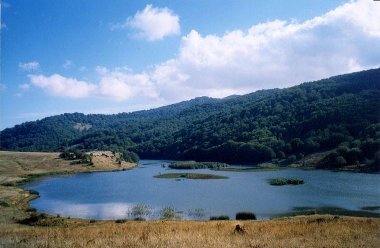 Ecotrail Sicilia 2015. Con il Trail dei Nebrodi, penultima prova del circuito un ultratrail con scenari nordici