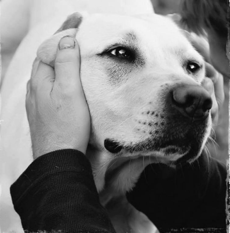 Cettina Vivirito e il suo cane Fred