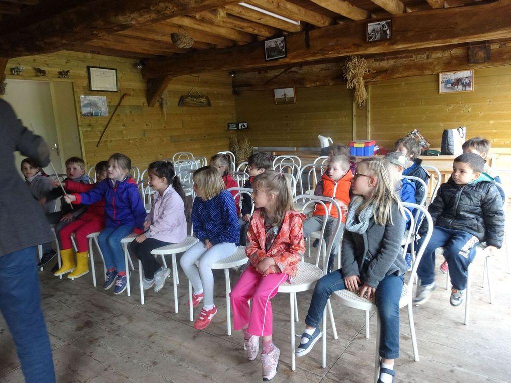 Z-Les G.S à la ferme des chevaux de trait 2015