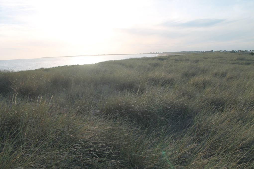 De Moutiers les Mauxfaits à la plage des belugas de la Faute sur Mer
