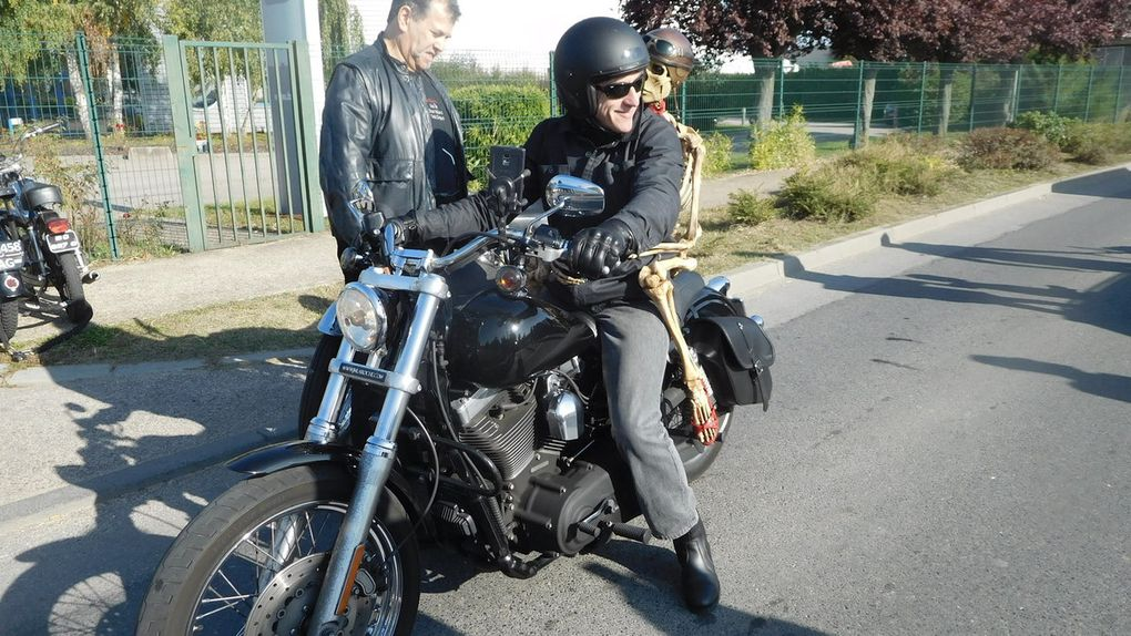 Moto Loup...