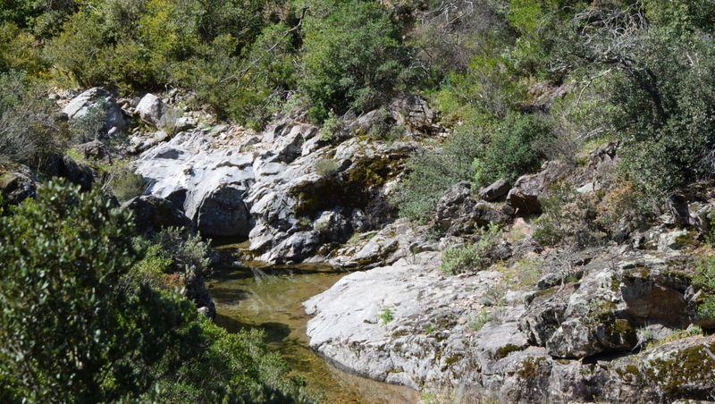 En avril un aller et  retour dans le vallon depuis le lieu de nos futures agapes de mai (avant débroussaillage)...