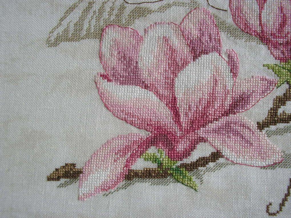 Etude botanique &quot&#x3B;Le Magnolia&quot&#x3B; de Véronique Enginger