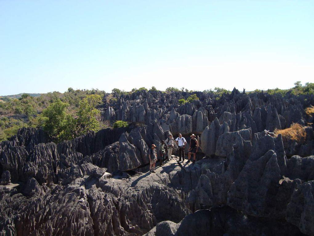 Parc national de bemaraha - Tsingy de bemaraha