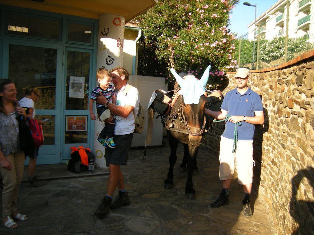 un mulet dans l'école:pas de bonnet d'âne.