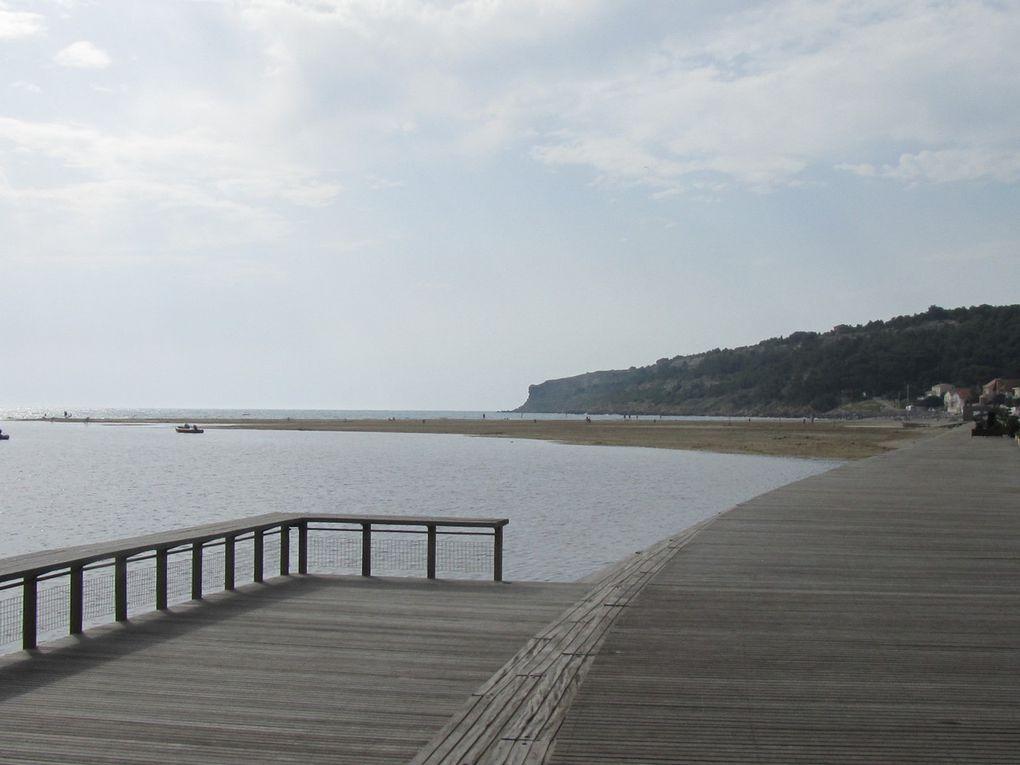 L'étang tôt le matin , au fond la mer .Ce jour là le vent souffle très fort .Seuls au monde à attendrent une belle prise .